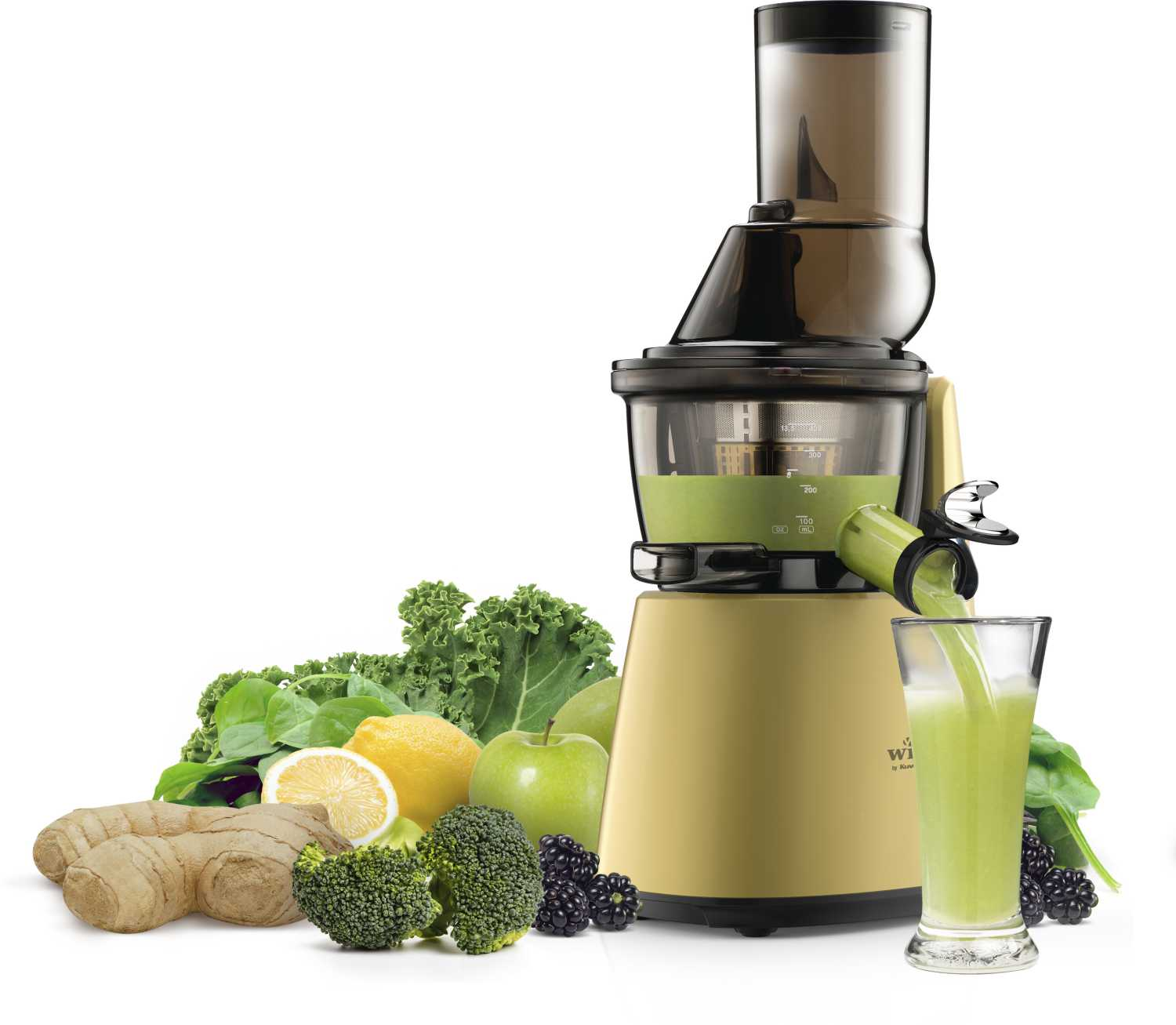 Witt by Kuvings Slowjuicer C9600 Gold