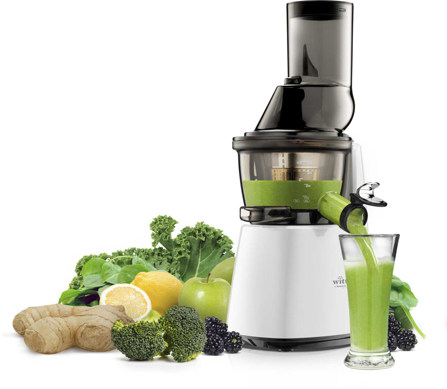Witt by Kuvings Slowjuicer C9600 White